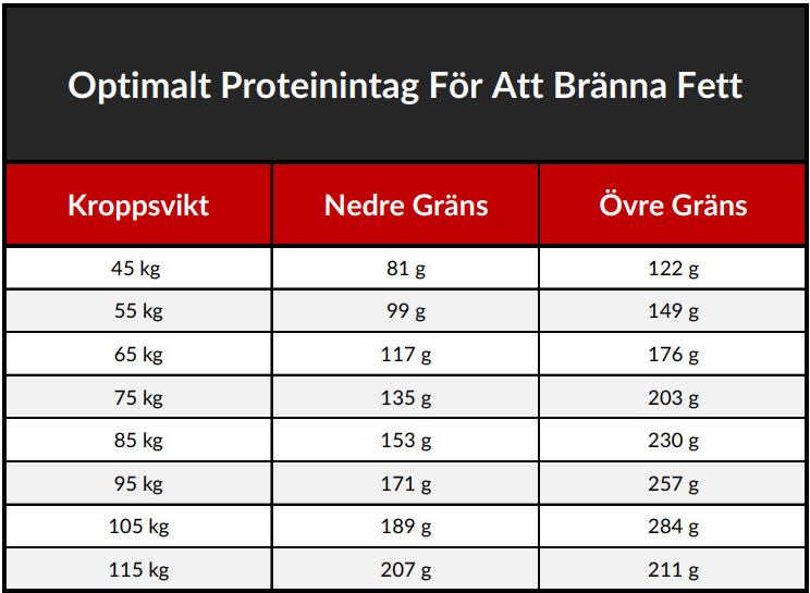 proteinintag bränna fett